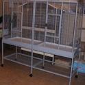 Cage plus grande? Imgp0011
