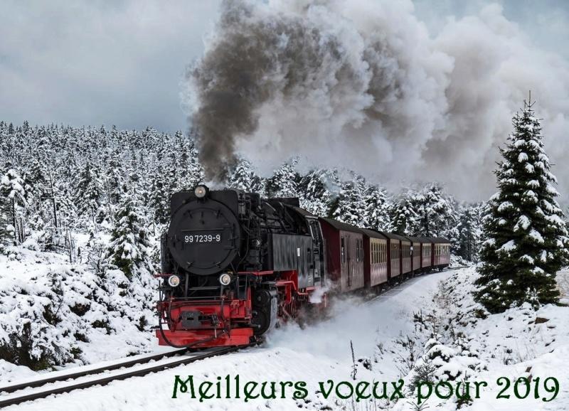 Voeux de Noël et de la nouvelle année - Page 2 Train_19