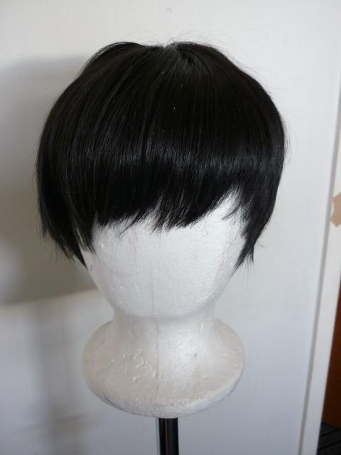 [SELLER] Wigs P1020510