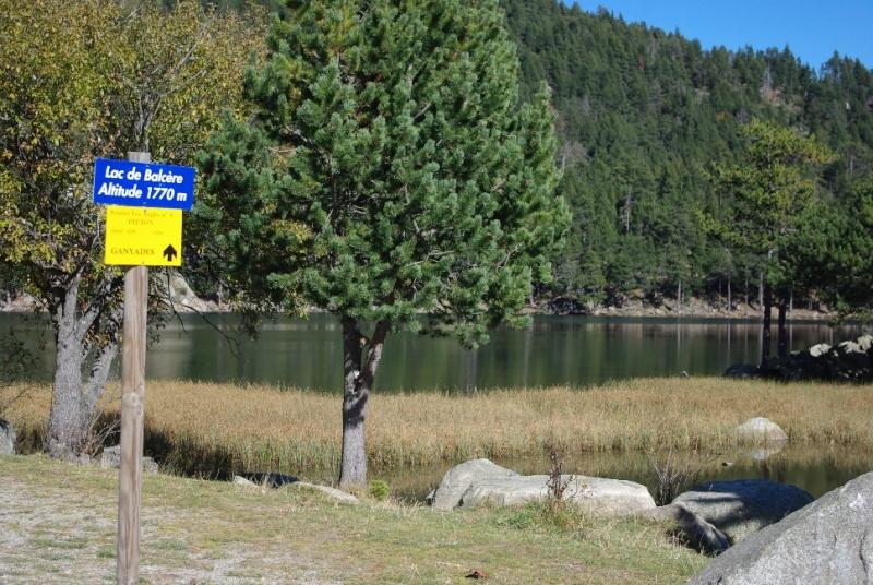 Lac de Balcère Octobre 2011 Imgp1236