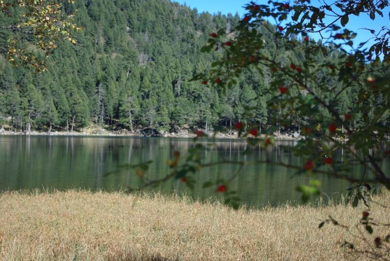 Lac de Balcère Octobre 2011 Imgp1238