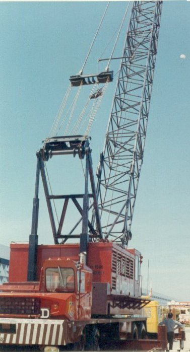 Les grues de MORAUD (France) Pingue10