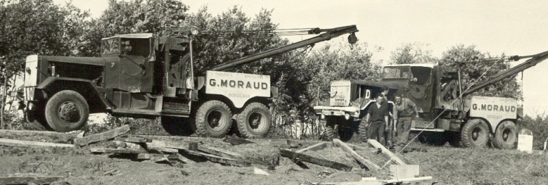 Les grues de MORAUD (France) Ward_x10