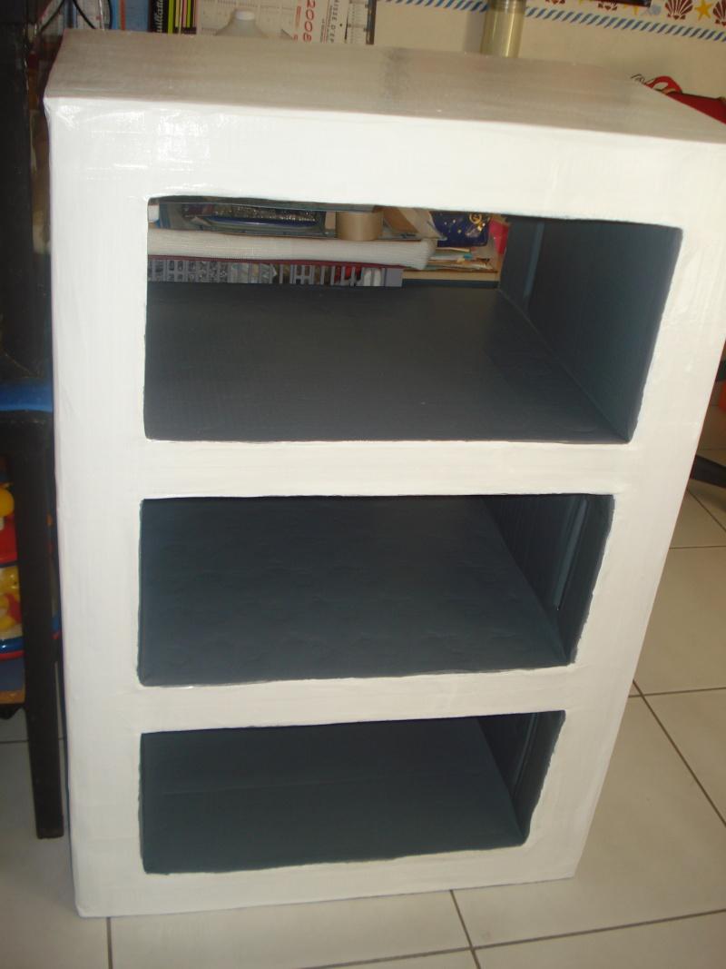 Mon 1er meuble en carton Dsc01911