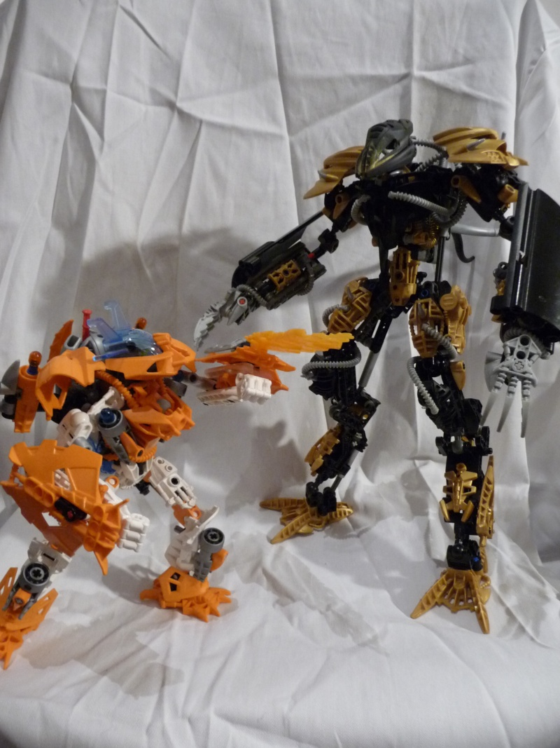 [MOC] Alion Vs Ariale P1060710