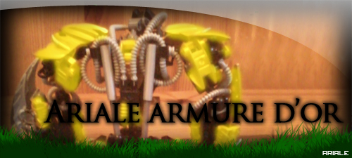 Ariale armure d'or Photo-10