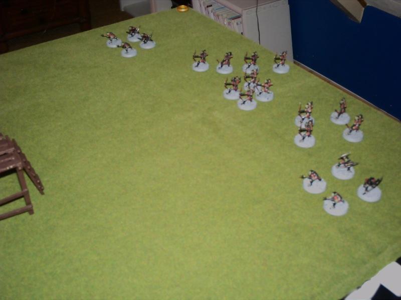 mon premier rapport de bataille Pict0010