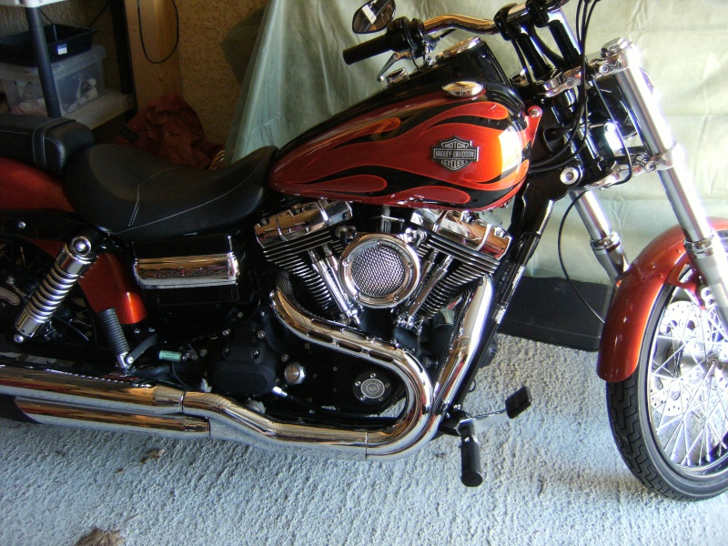 DYNA WIDE GLIDE, combien sommes-nous sur Passion-Harley - Page 6 Dscf8513