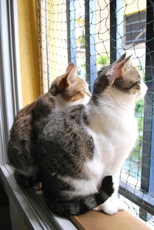 Souki et Eiko - Page 23 Photo101