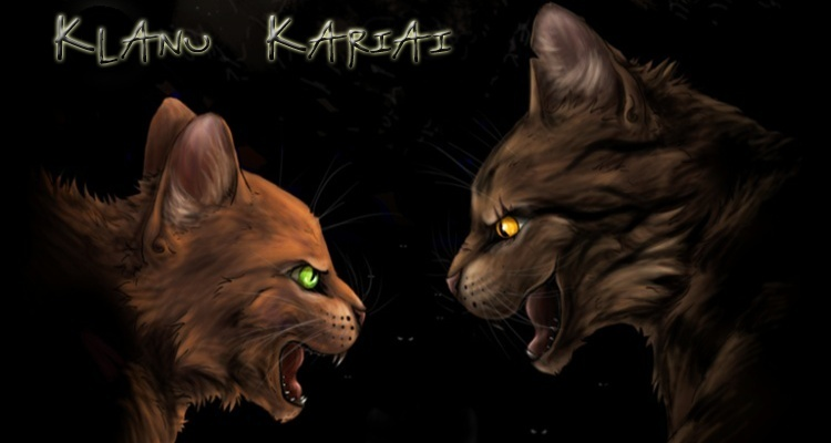 Warrior Cats.