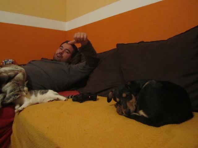 Kami, chien de randonnée 09oct210