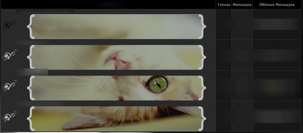 ¿Cómo poner un solo fondo para todos los widgets? Cat311