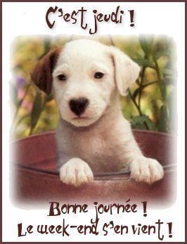 Salut les amis !!!!  - Page 18 9qprly10