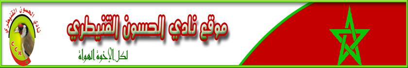 موقع نادي الحسون القنيطري