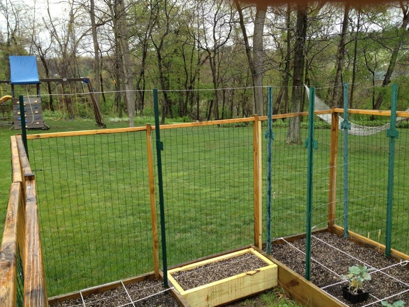 How would you string this pea trellis? Set-up10