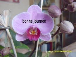 Cairn de Juillet 2012 - Page 2 Bonnej69