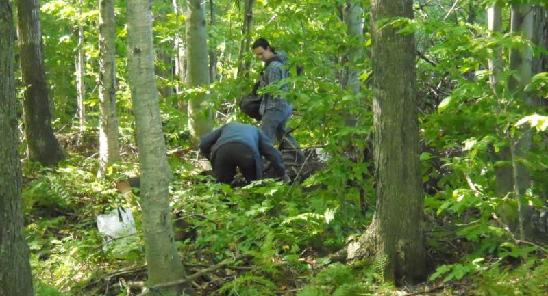 """Rapport de """"creuse"""" - Dompe de St-Ours, Québec - 18 septembre 2011 1014"""