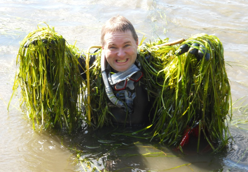 Rapport de plongée - Rivières des Milles-Isles/Laval - 4 août 2011 1511