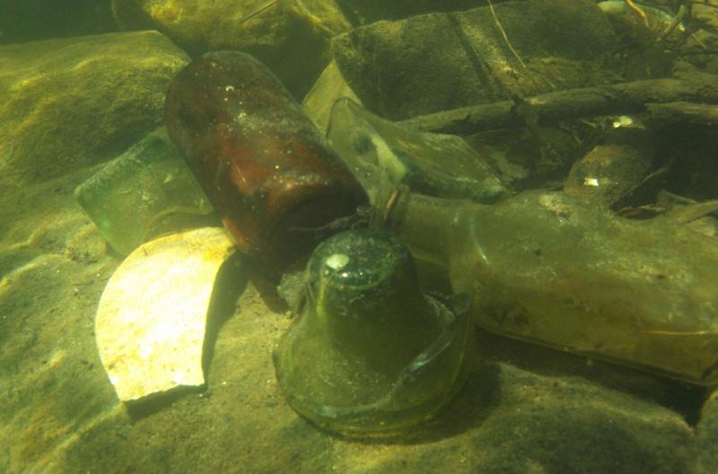 Plongée en apnée sur la rivière Petite-Nation – 24 juillet 2011 1610