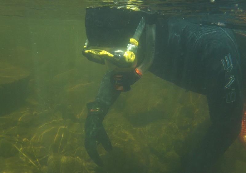 Plongée en apnée sur la rivière Petite-Nation – 24 juillet 2011 1910