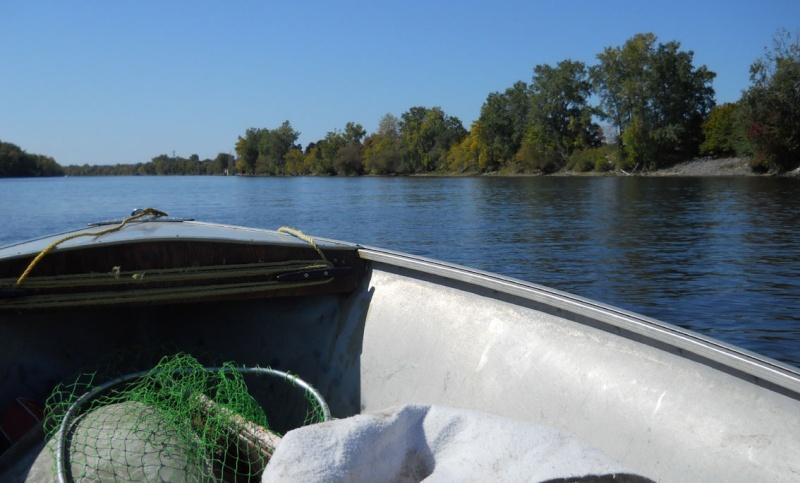 Rapport de plongée - Rivières Gatineau et des Outaouais - 25 septembre 2011 217