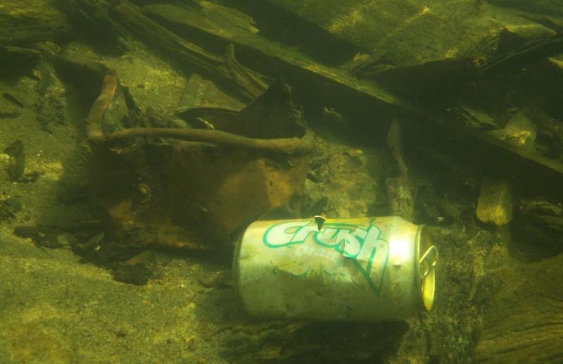 Plongée en apnée sur la rivière Petite-Nation – 24 juillet 2011 2510