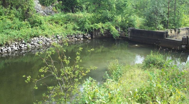 Plongée en apnée sur la rivière Petite-Nation – 20 août 2011 313