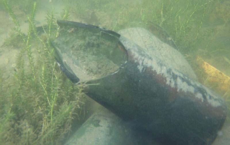 Plongée en apnée sur la rivière Petite-Nation – 20 août 2011 413