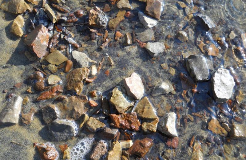 """Rapport de """"prospection"""" - Île Kettle (Rivière des Outaouais), Québec - 7 novembre 2011 416"""