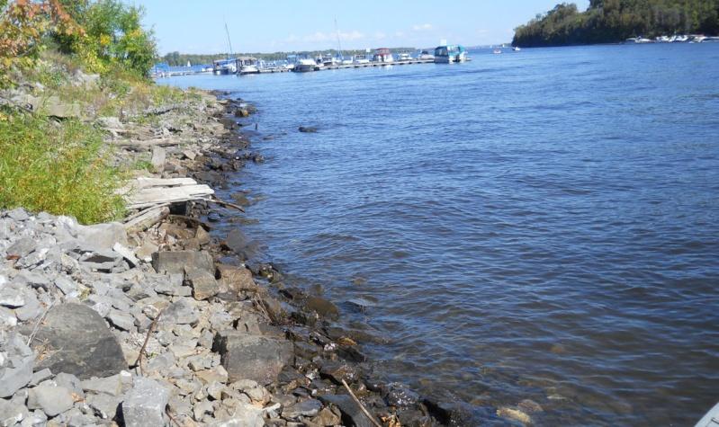 Rapport de plongée - Rivières Gatineau et des Outaouais - 25 septembre 2011 517