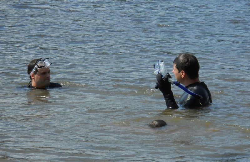 Rapport de plongée - Rivières des Milles-Isles/Laval - 4 août 2011 811