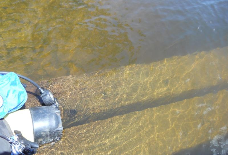 Rapport de plongée - Rivières Gatineau et des Outaouais - 21 Juillet 2011 Plonga10