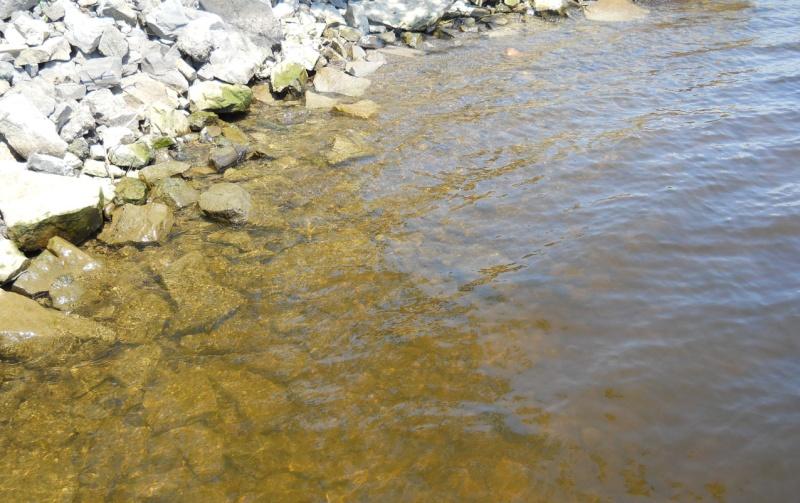Rapport de plongée - Rivières Gatineau et des Outaouais - 21 Juillet 2011 Plonga11