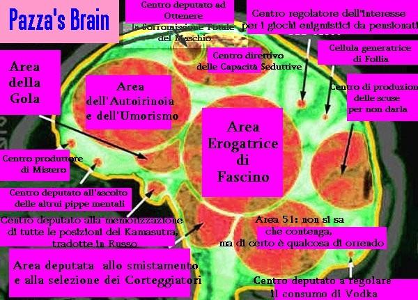 La Struttura Cerebrale degli Utenti della Valle dell'Eco - Che dico Super Quark...... STRA-QUARK Cervpa10