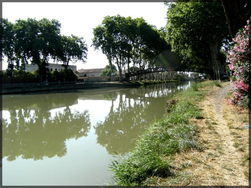 JUILLET 2011 Canal10