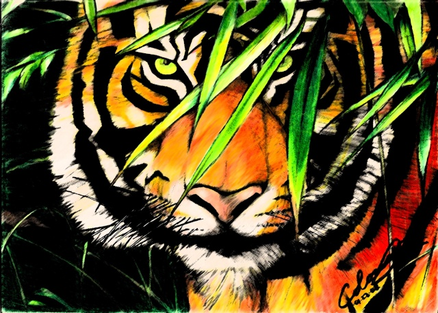 Colome JR Feliz Cumple Años Tiger10