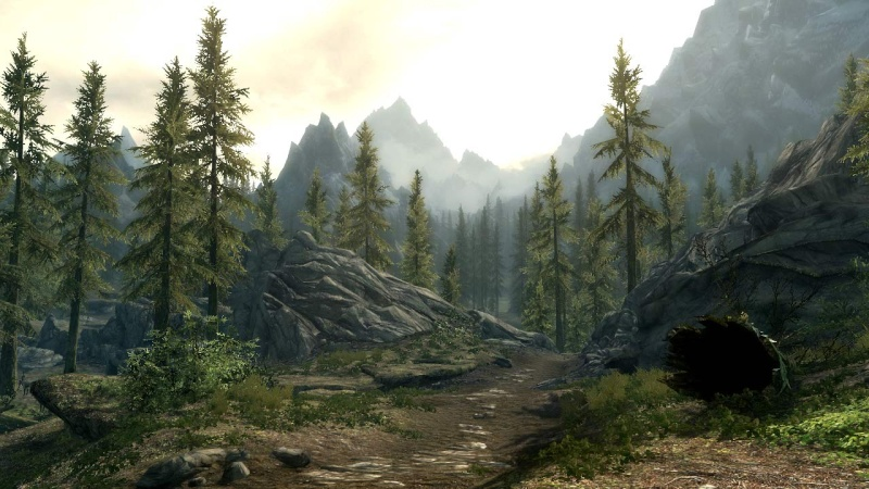 The Elders Scrolls V : Skyrim Skyrim12