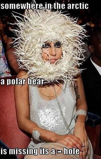 Funny pic thread - Page 4 Gaga_f10