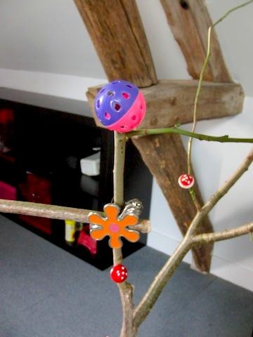 Un arbre à Perruches !!! - Page 4 Cimg9013