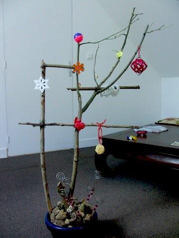 Un arbre à Perruches !!! - Page 5 Cimg9016