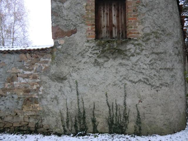portes et fenêtres ,a vos photos - Page 3 Cimg4624