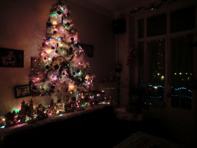 sapin de Noël  Cimg4721