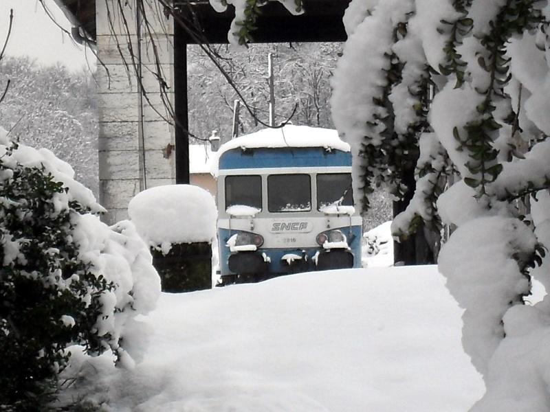 x 2816 sous la neige Sdc10110