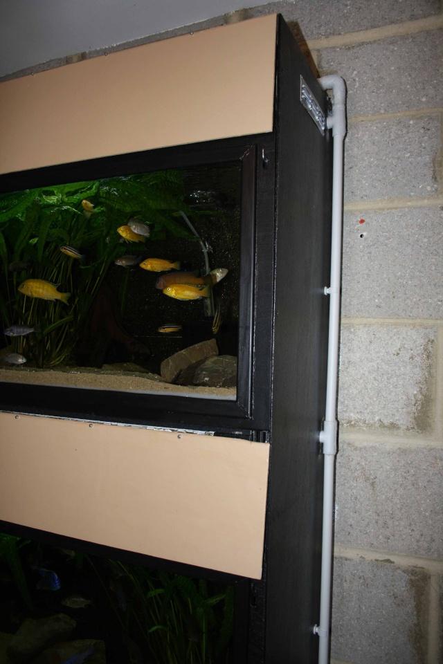 batterie d'aquarium - Page 2 Img_2212