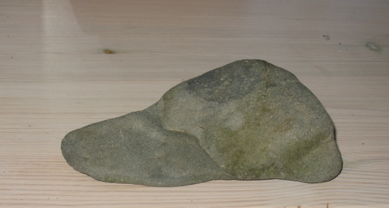 Stones I found in the Kamogawa, Kyoto Kamoga12
