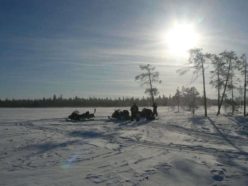 voyage en laponie finlandaise inoubliable !!!  P1050010
