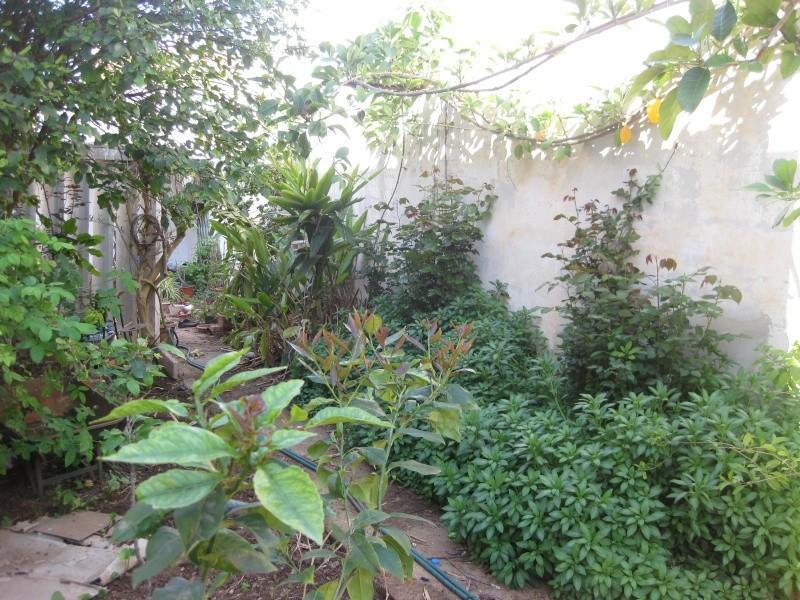 un bout du jardin  Jardin10