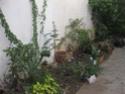 reamenagement de mon espace jardin Sheper10