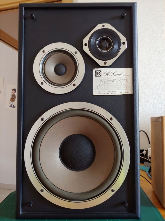 Expert Pro Sound mod. EW 70 20200313
