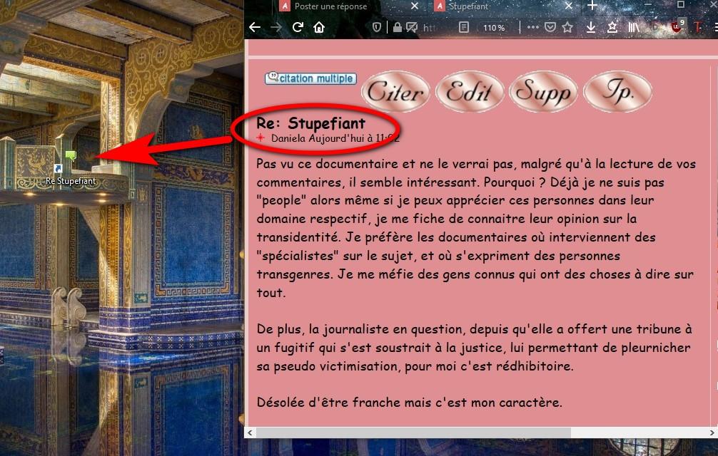le salon pour dire bonjour en Passant - Page 12 Annota26